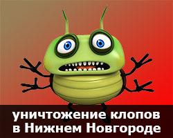 уничтожение клопов в Нижнем Новгороде